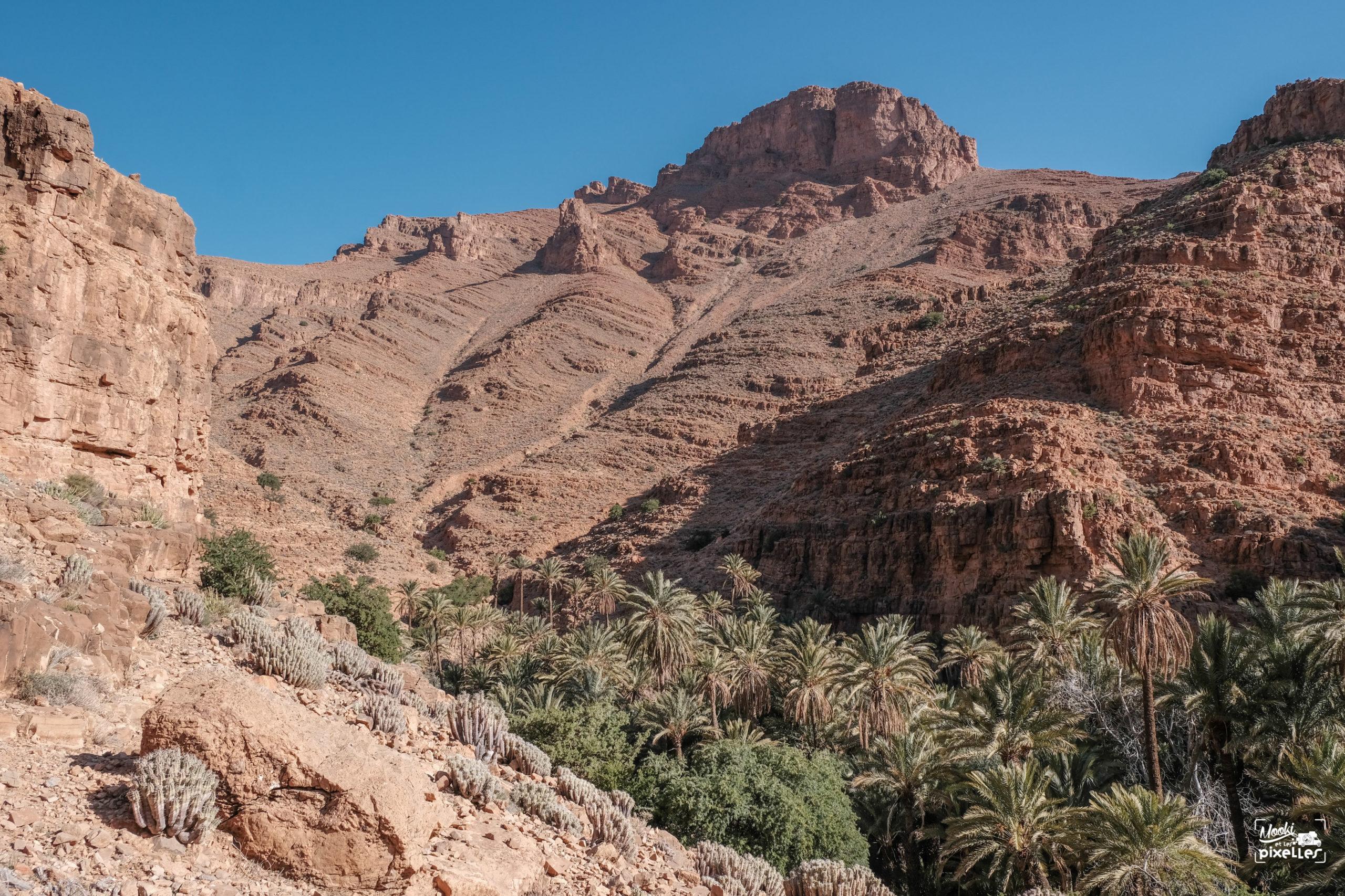 L'oasis de Ait Mansour au Maroc