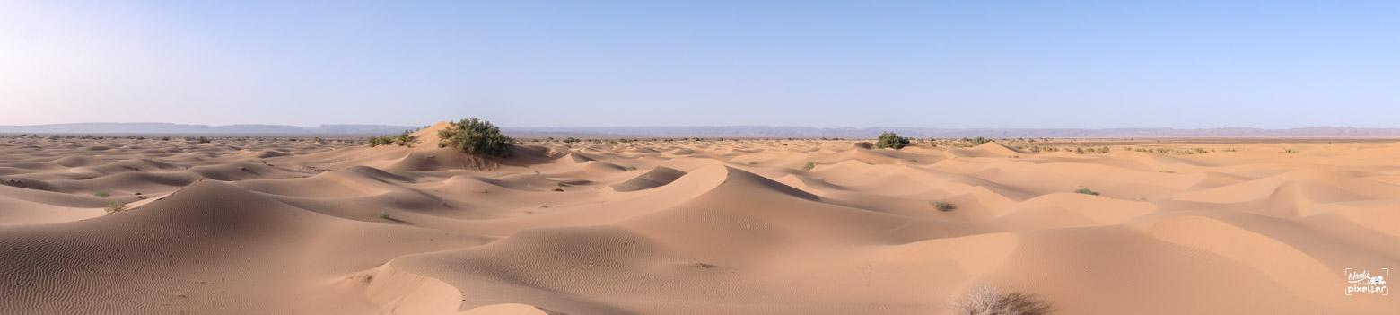 Panorama des dunes à M'hamid au Maroc