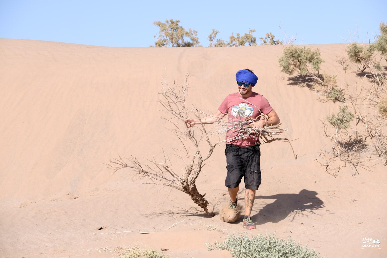 Ramassage de bois pour le feu dans le désert