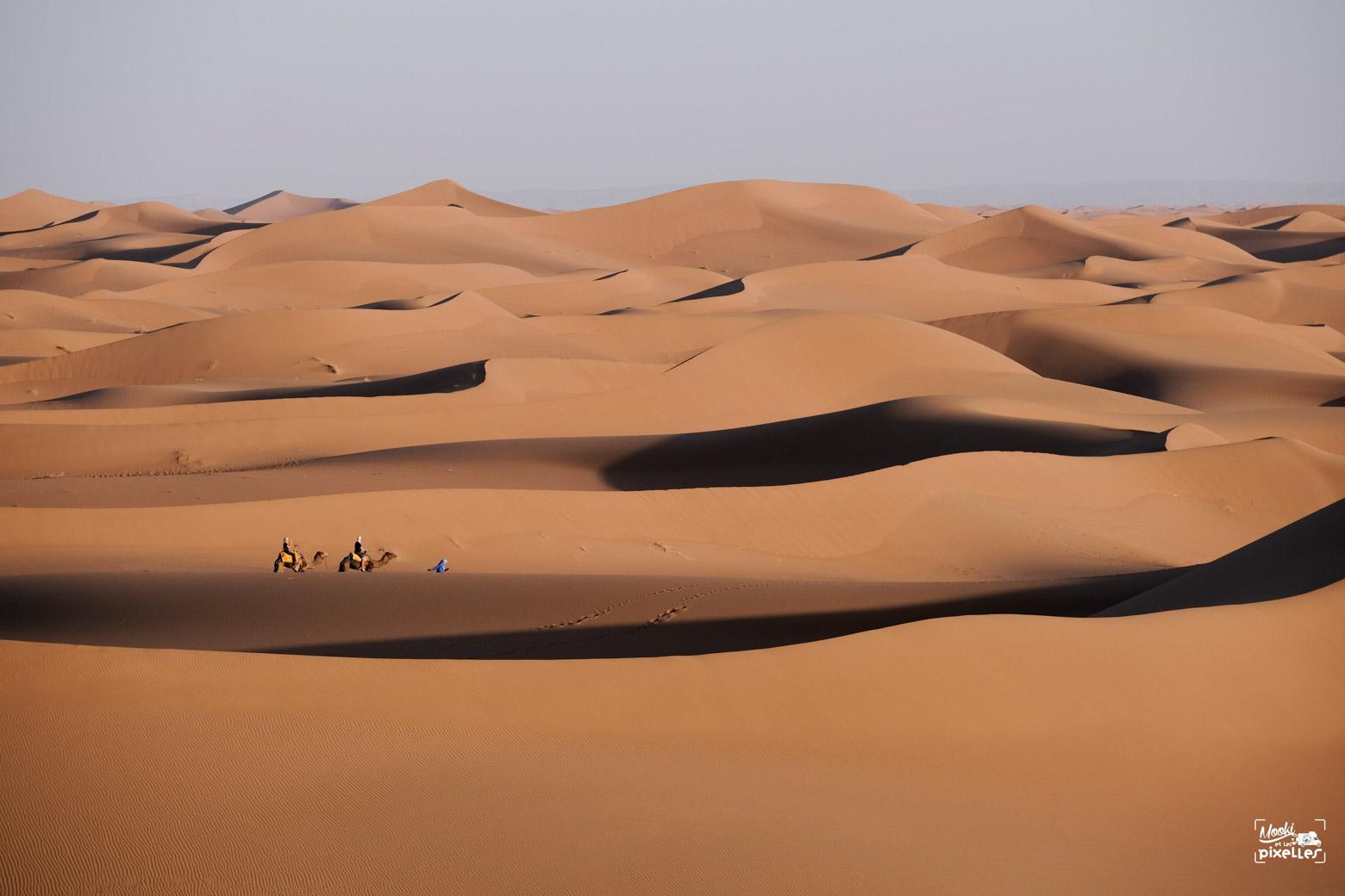 Magnifique vue sur les dunes du Sahara au Maroc