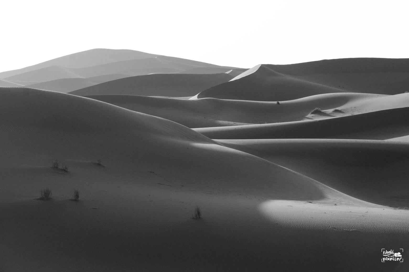 Photo noir et blanc dans le désert du Sahara