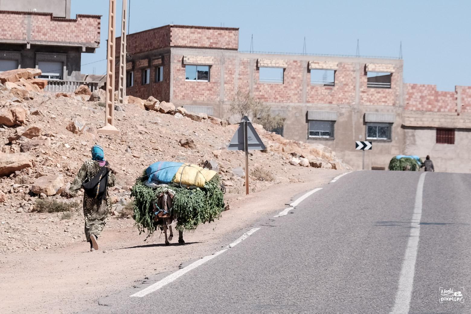 Une femme avec son âne au bord de la route
