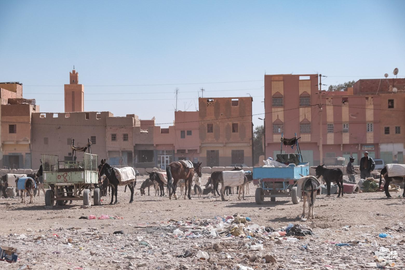 Le parking des ânes devant le souk